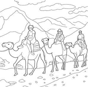 Fantastic camel riding