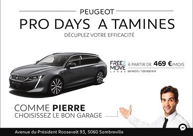 Peugeottamines.png
