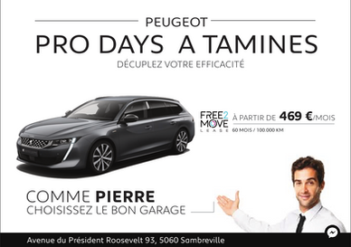 Peugeottamines.png