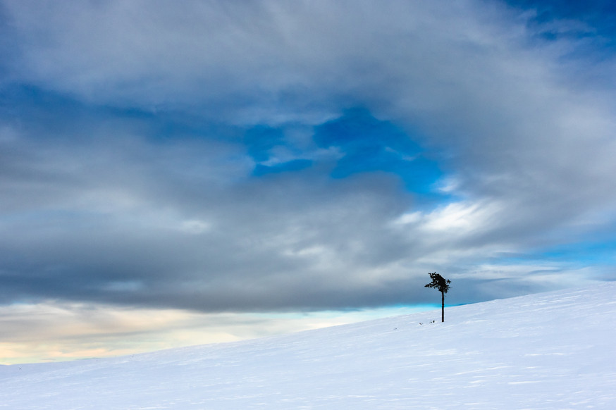 Lapland (4 of 43)