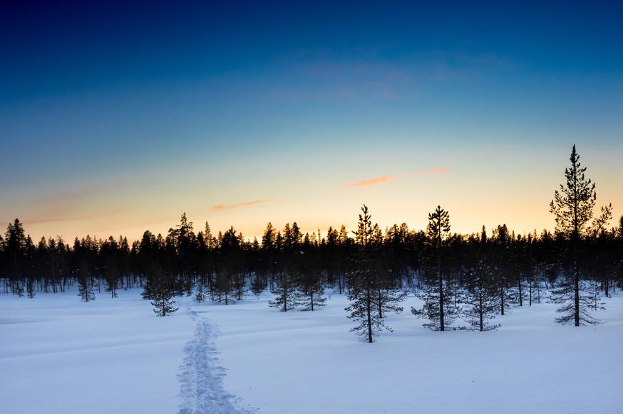 Lapland (41 of 43)