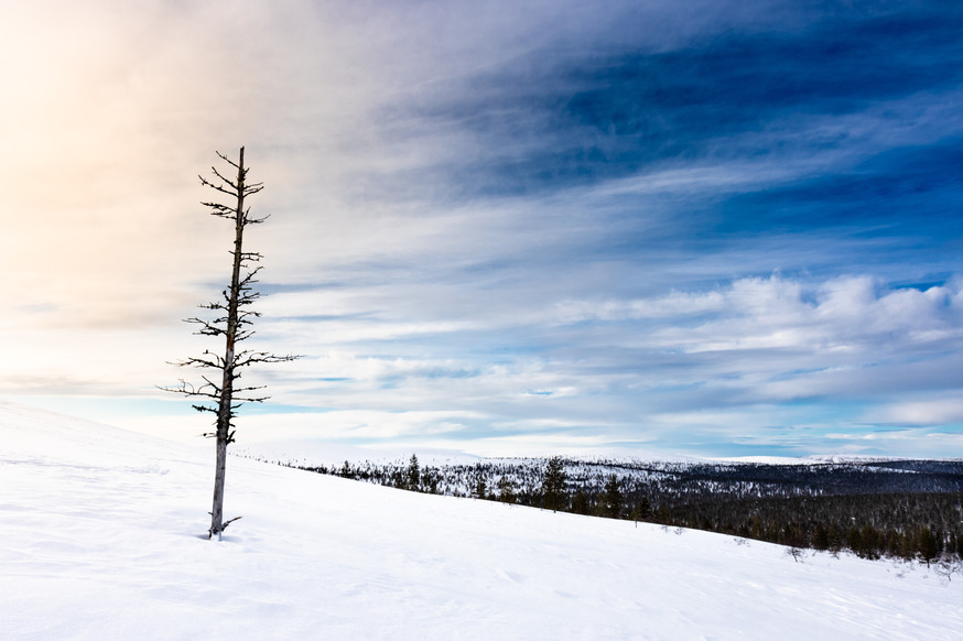 Lapland (2 of 43)