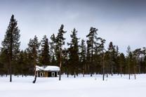 Lapland (9 of 43)