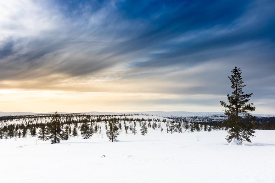 Lapland (3 of 43)