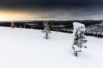 Lapland (27 of 43)