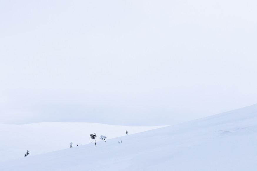 Lapland (16 of 43)