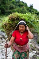 People from Nepal (6 of 17).jpg