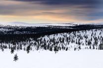 Lapland (5 of 43)