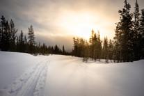 Lapland (8 of 43)