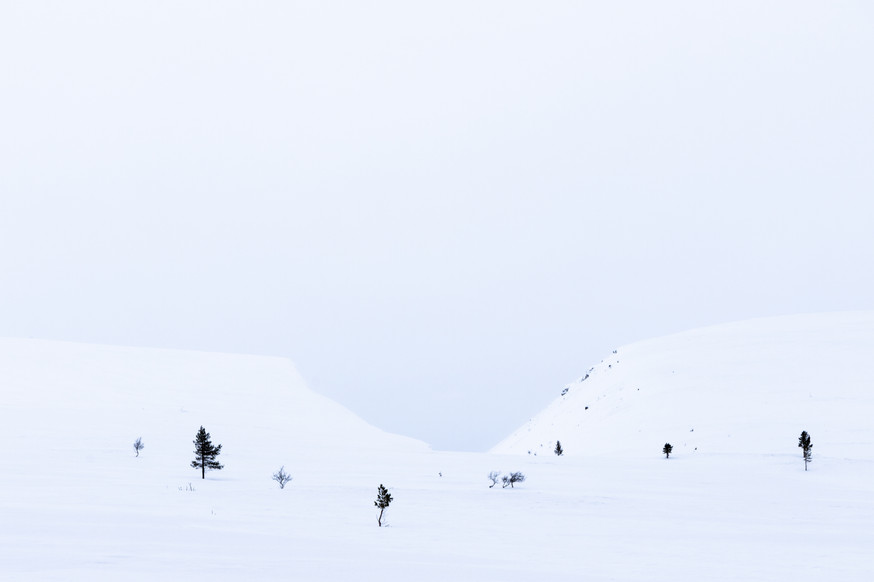 Lapland (15 of 43)