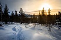 Lapland (39 of 43)