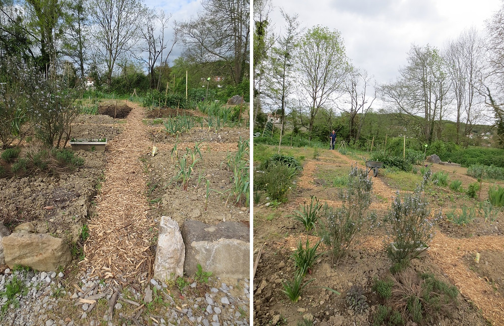Allotment in France - ideas for a new novel