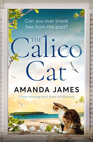 Calico Cat my top 5 reads from 2019