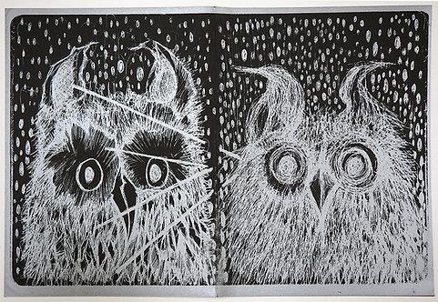 Epicentro Owls