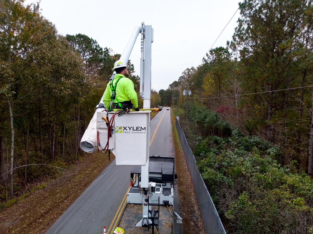 Shenandoah Valley Electric Cooperative Amp Xylem Tree Experts