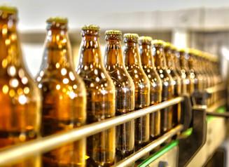 Hoje é dia internacional da cerveja