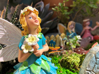 Monday Magic with the Fairies!!