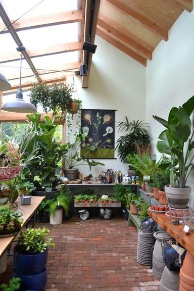 Boho Botanicals