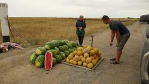 Barnaul (Russia) to Almaty (Kazakhstan)
