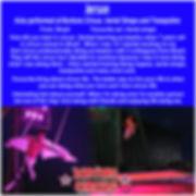 Jerson performer profile