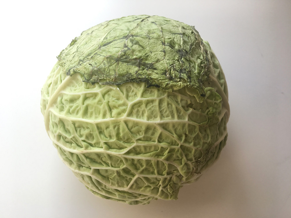 a mouldy old cabbage