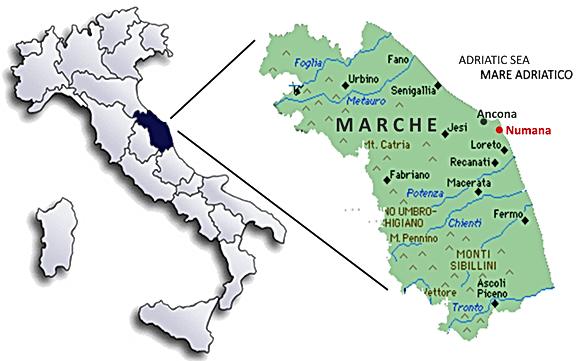 Mappa_Italia_Marche.png