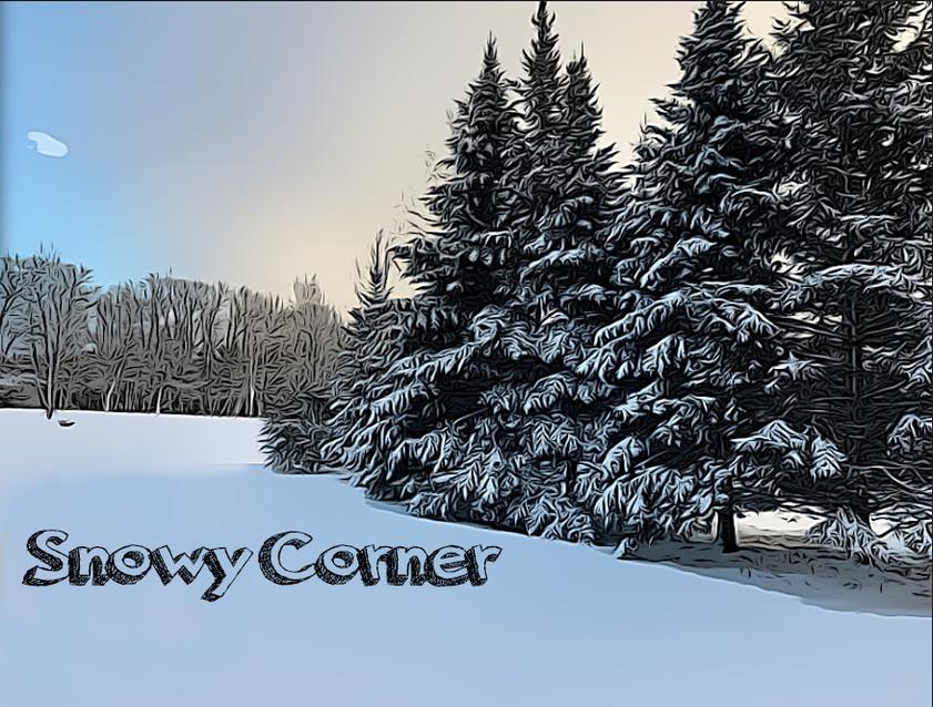Snowy Corner