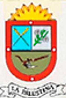MUNICIPIO PALESTINA