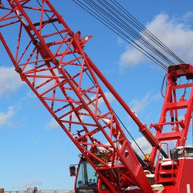 Red Crane.jpg