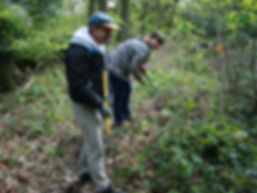 Volunteering at the Wild Life Trust