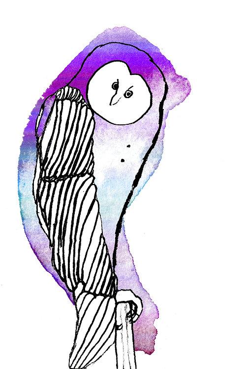 Owl Print - Wentworth Design