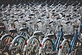 bicycles-1246597_1920.jpg