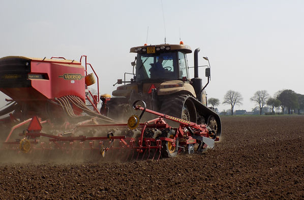 2018 Vining Peas being Drilled