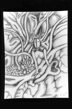 drawings 53