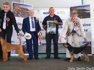 1st in the Group at Coleraine All Breed Championship Show