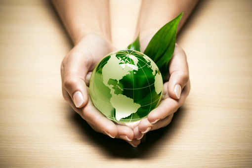 RMG-ECO Green Business Solutions
