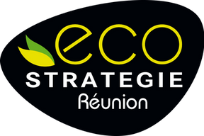EcoStratReunion_logoCoul.png