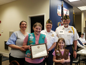 VFW Post Recognizes Local Girl Scout Troop