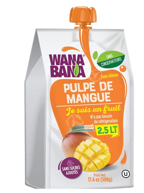 Pulpe de mangue non réfrigérée • pure, sans conservateur et sans sucre