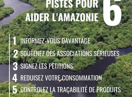 6 pistes pour aider l'Amazonie