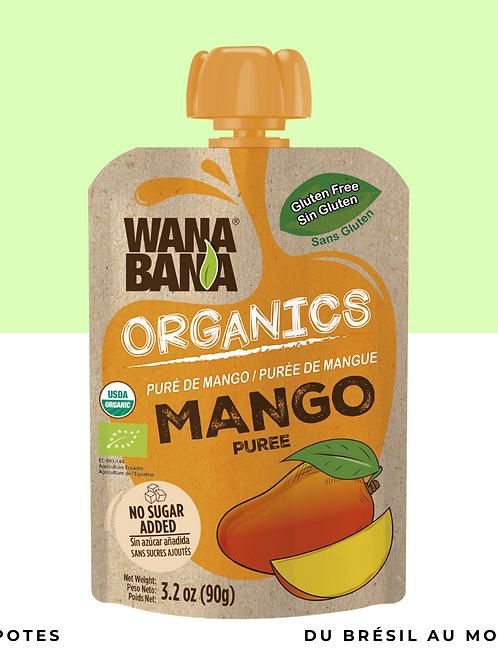 Pulpe de Mangue BIO • naturelle, sans conservateur et sans sucre