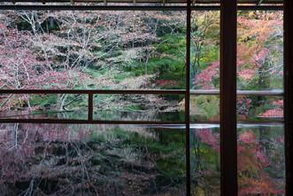 冬を迎える瑠璃光院の窓
