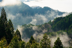 おにゅう峠の雲海