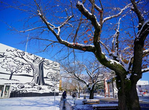 日帰りで桜流鏑馬の街、十和田へ🐴🌸