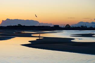 兵庫 新舞子海岸の干潟