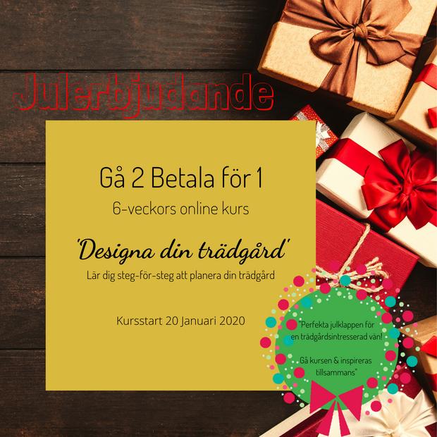 AVSLUTAD - Erbjudande t.o.m 23/12 2019 Gå 2 betala för 1 - 1995 kr