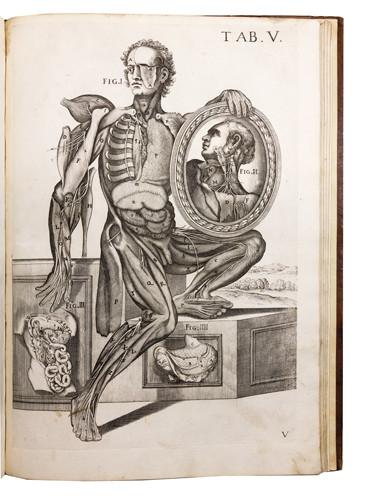 Tabulae Anatomicae a Celeberrimo Pictore Petro Berrettino Cortonesi