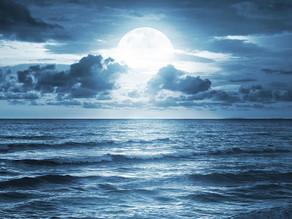 Harness the Full moon eclipse in Sagittarius