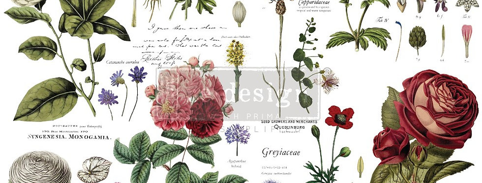 Redesign Decor Transfer Vintage Botanical | Redesign with Prima Furniture Tr