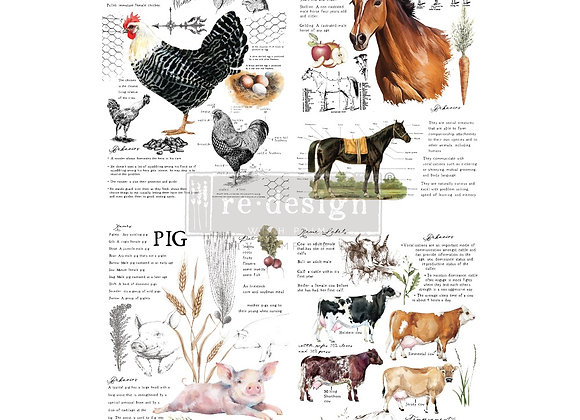 Farm Life Transfer